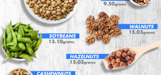 list of plant based proteins for vegans